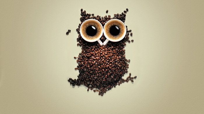 birds, creativity, animals, coffee, coffee beans, owl, simple background