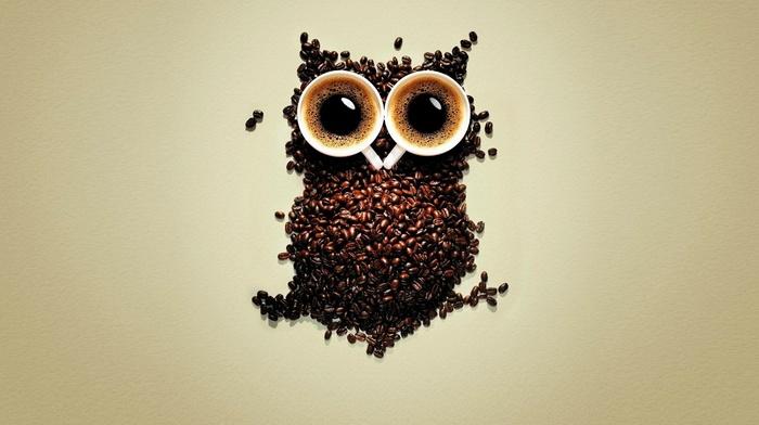 owl, coffee beans, coffee