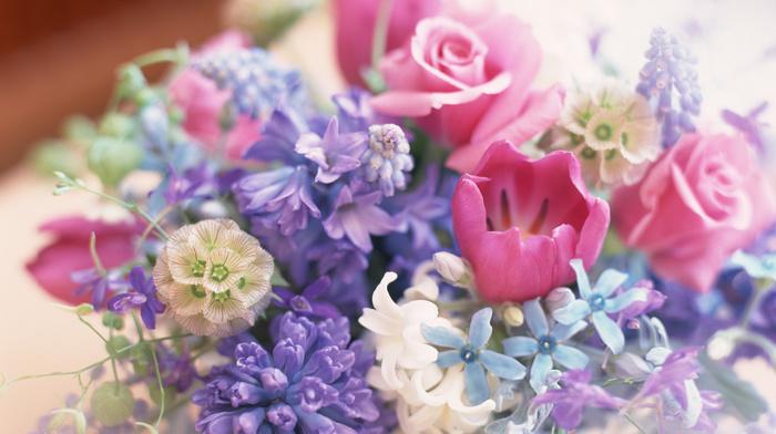 tulips, bouquet, roses, macro, flowers