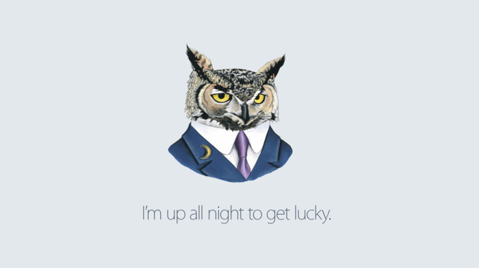 drawing, artwork, simple background, suits, Daft Punk, lyrics, white background, digital art, simple, humor, owl