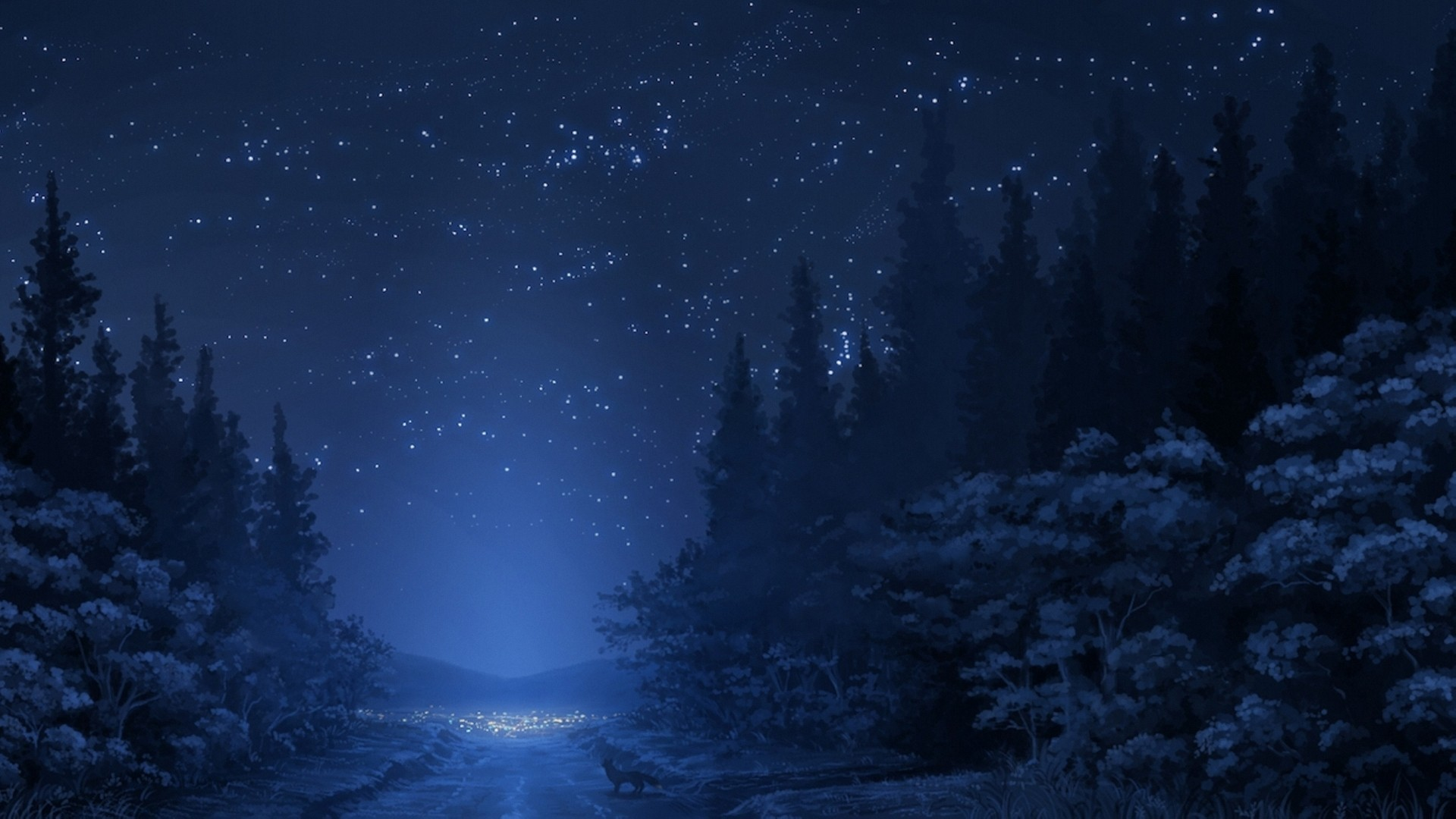 Road Night Forest Stars Download Wallpaper