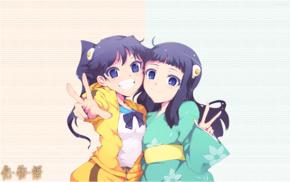 Monogatari Series, Araragi Karen, Araragi Tsukihi, anime