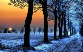 закат, дорога, пейзаж, деревья, снег