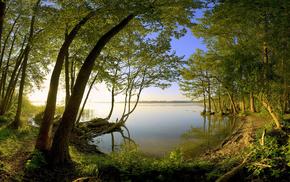 nature, lake, dawn