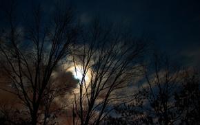 тучи, природа, луна, деревья, вечер