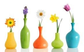 flowers, vase, creative
