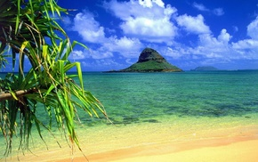 summer, greenery, island, sea
