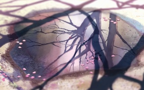 nature, 5 Centimeters Per Second, anime, Makoto Shinkai