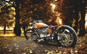 fall, Harley Davidson, leaves