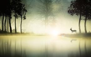 animals, landscape, nature, river, deer, environment