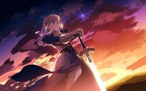 Saber, FateZero, Fate Series
