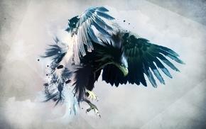 hawks, digital art