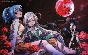 Sendo Yukari, Rosario  Vampire, anime girls, Kurono Kurumu, Akashiya Moka, anime