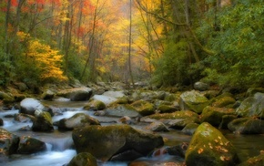 creek, stones, autumn