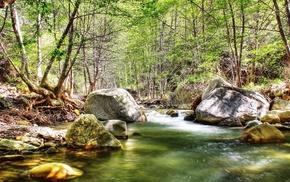 stones, nature, creek