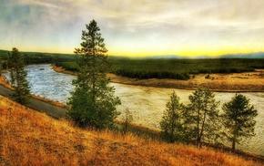 nature, river