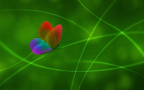 green, lines, 3D, color, butterfly