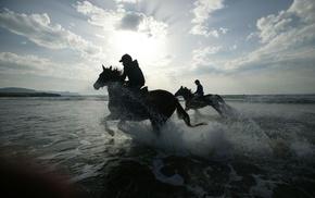 лошади, фото, фон, наездники, природа, пляж