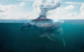 nature, whale, artwork, split view, digital art, water