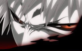 Kurosaki Ichigo, Bleach, Hollow, sword