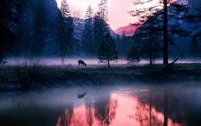 Лес, озеро, горы туман, природа, олень
