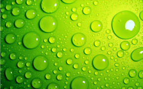 macro, drops, green