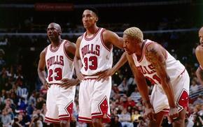 Dennis Rodman, basketball, Michael Jordan, Scottie Pippen, NBA, sports
