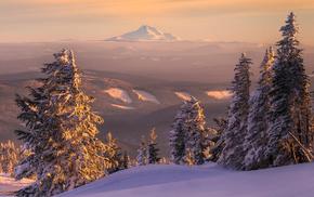 landscape, snow, nature, horizon, forest