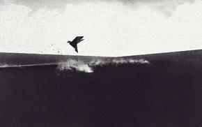птицы, цифровое искусство, монохром