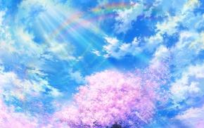 sky, sun rays, rainbows, cherry blossom, clouds