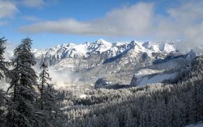деревья, снег, пейзаж, туман, горы